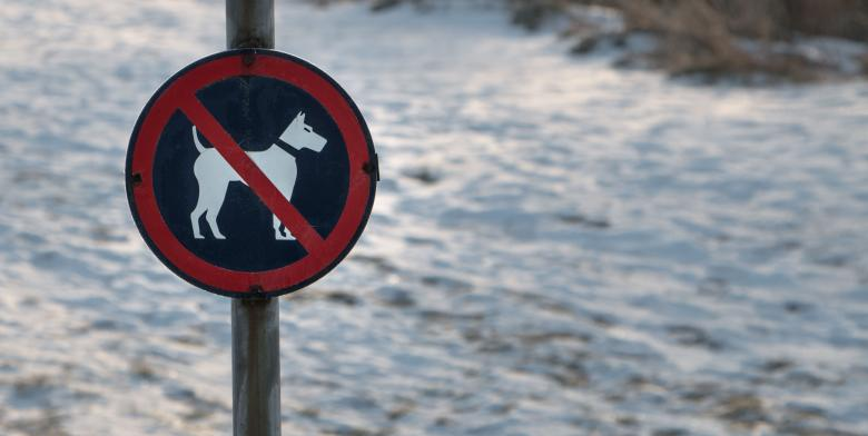 Free Stock Photo of No dogs sign Created by Janis Urtans