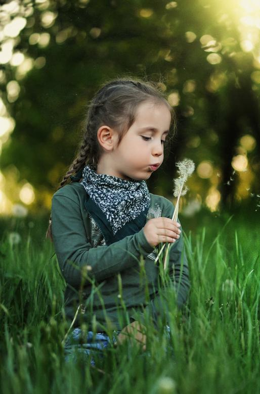 Free Stock Photo of Girl with a Dandelion Created by Pixabay