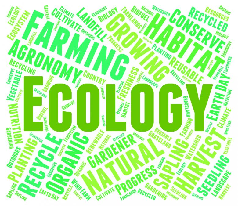 Ecology Word Means Earth Day And Environment - Free Environmental Stock Photos