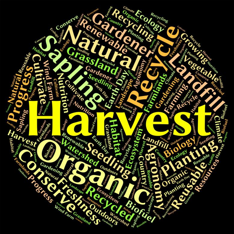 Free Stock Photo of Harvest Word Means Produce Grains And Gather Created by Stuart Miles