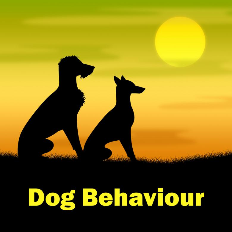 Free Stock Photo of Dog Behaviour Means Actions Landscape And Pup Created by Stuart Miles