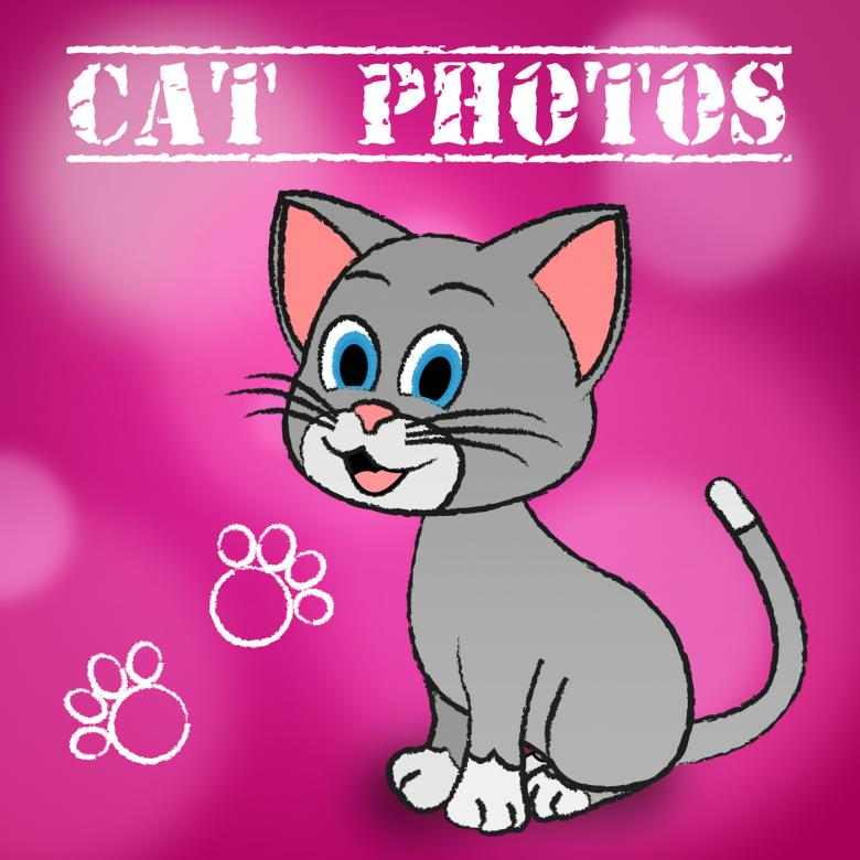 Free stock image of Cat Photos Indicates Snapshot Photography And Camera created by Stuart Miles