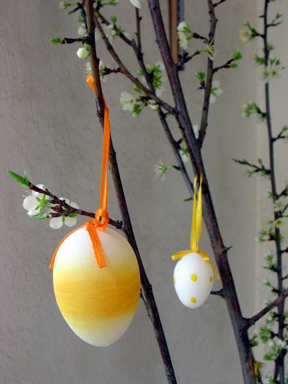 Free Stock Photo of Easter Egg Decoration Created by Iva Villi