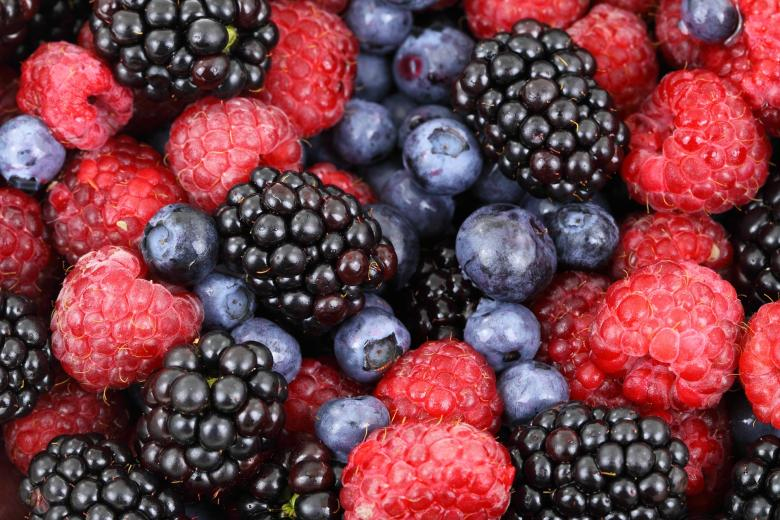 Fresh Berries | Free Food Stock Photos