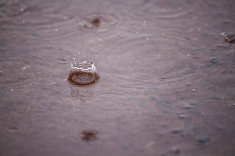 Free Stock Photo of Rain drops on water puddle Created by Eduardo Soares Bogosian