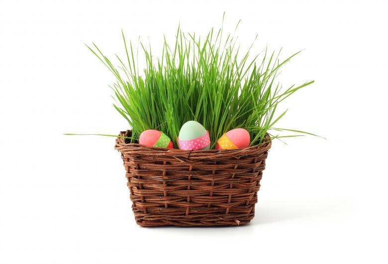 Easter Egg Basket - Free Easter Stock Photos & Vectors