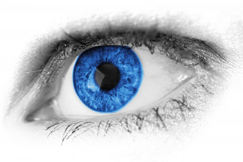 Free Stock Photo of Blue Human Eye Created by Pixabay