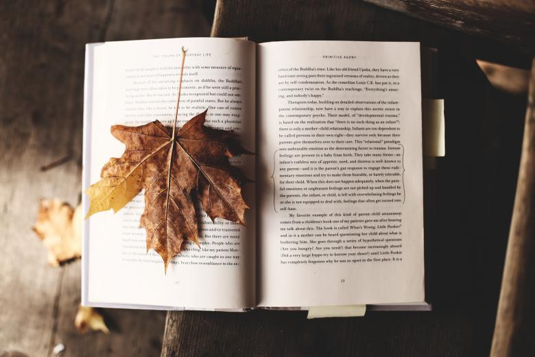 Fallen Leaf on the Book - Free Autumn Stock Photos