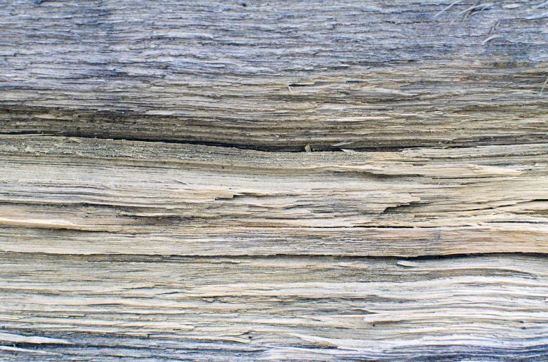Free Stock Photo of Old Timber Surface Created by Lukas