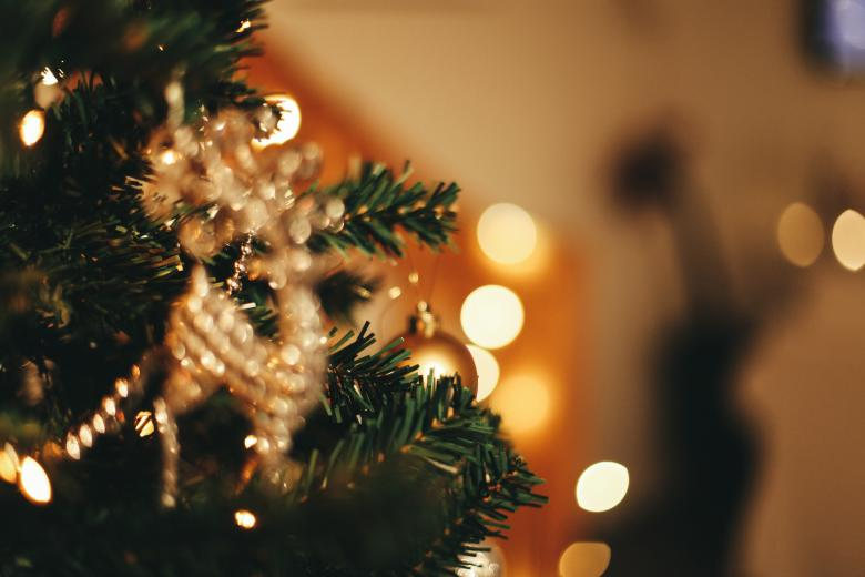 Free Stock Photo of Christmas Tree Background Created by Bjorgvin