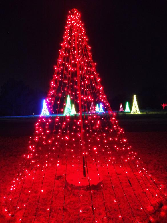 Free Stock Photo of Red Christmas Lights as Tree at Night Created by agphotostock.com