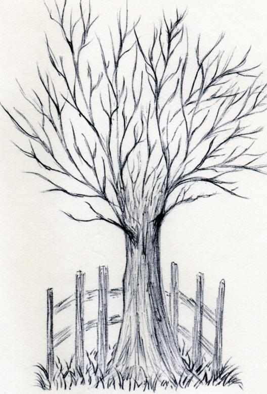 Free Stock Photo of Wife Drew a Tree Created by rudy liggett