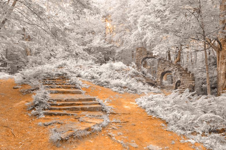 Forest Castle Ruins - Frosted Fantasy Free Photo