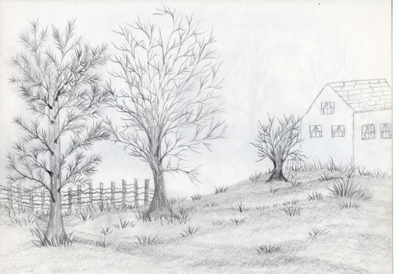 Free Stock Photo of Hand drawn landscape trees Created by rudy liggett