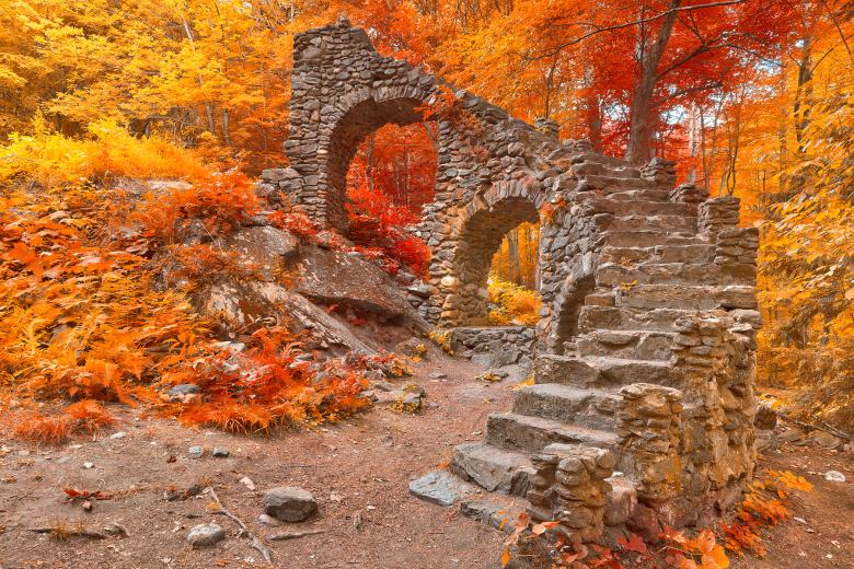 Free Stock Photo of Forest Inferno Ruins Created by Nicolas Raymond
