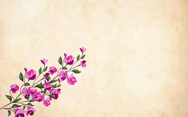 Free Stock Photo of Pink Floral Vintage Background Created by mohamed hassan