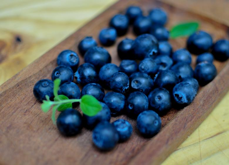 Free Stock Photo of Organic Blueberries Created by Photostockeditor
