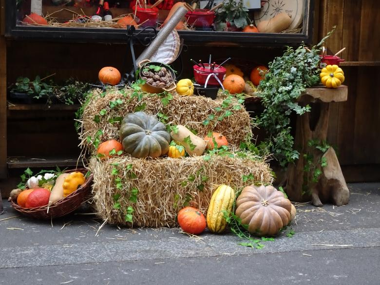 Free Stock Photo of Real autumn vegetables displayed in front of a restaurant Created by GAIMARD Jacques