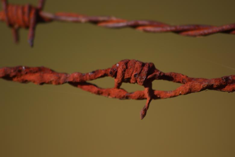 Free Stock Photo of Rusted, but strong enough barbed wire... Created by GAIMARD Jacques