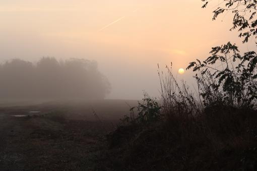free stock photo of foggy but beautiful sunset