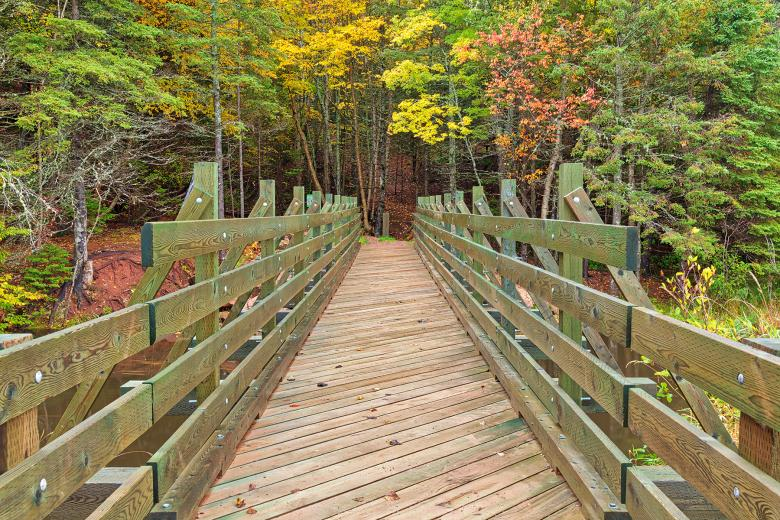 Free Stock Photo of Autumn Bonshaw Bridge Created by Nicolas Raymond