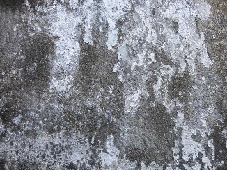 Free Stock Photo of White and Gray Grunge Wall Texture Created by Chekokiart