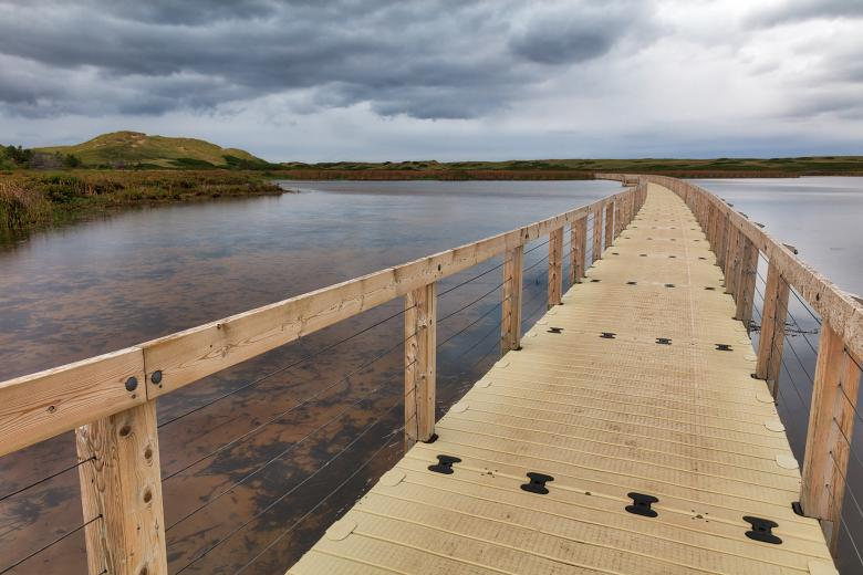 Free stock image of Bowley Pond Boardwalk Trail created by Nicolas Raymond
