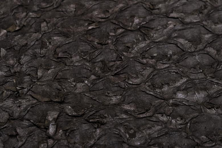 Free Stock Photo of Dark Fish Scale Texture Created by Bjorgvin Gudmundsson