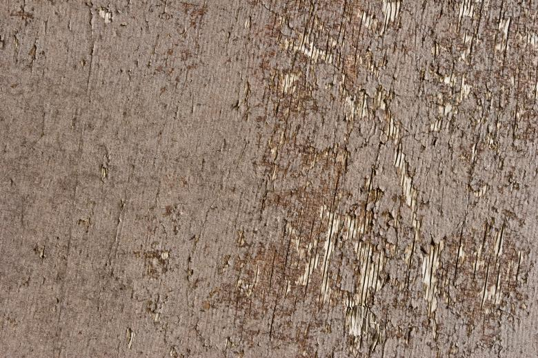 Free Stock Photo of Cracked Dry Wood Created by Bjorgvin
