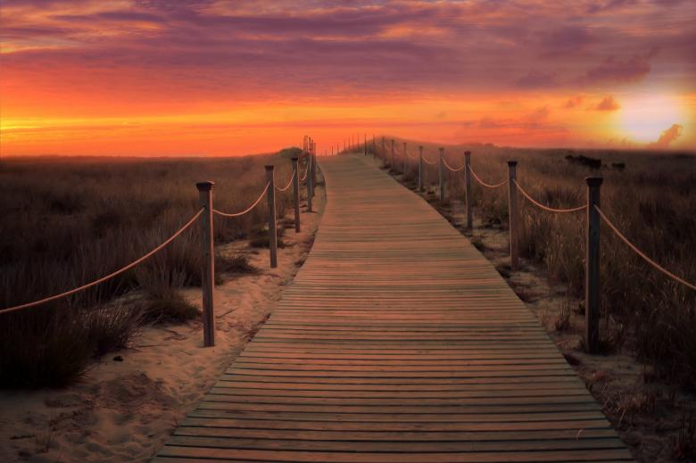Free Stock Photo of Sunset Landscape - Path to Sea Created by Jovani