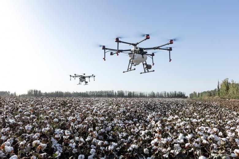 Free Stock Photo of Dji Agriculture Created by Jovani