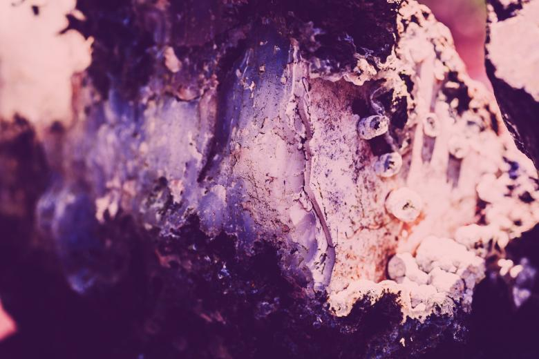 Free Stock Photo of Abstract Violet Rock Crystal Surface Created by Free Texture Friday
