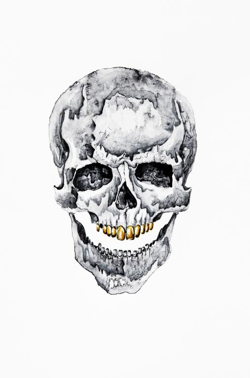 Free Stock Photo of Skull Illustration Created by Nika Akin