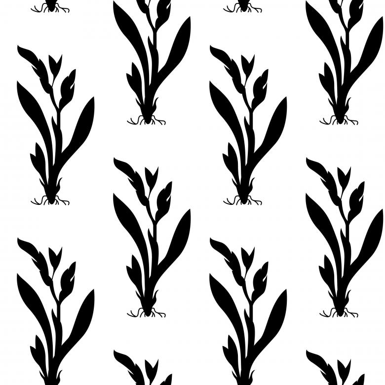 Free Stock Photo of Floral Nature Seamless Vector Pattern Created by Sos