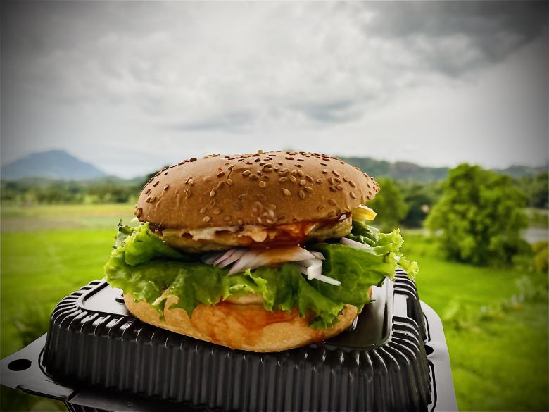 Free Stock Photo of Srilankan Cheese Burger Is very tasty Created by Sakeer