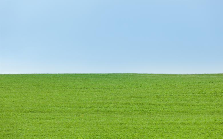Free Stock Photo of Background of Green Field with Blue Sky Created by Antonio Gravante