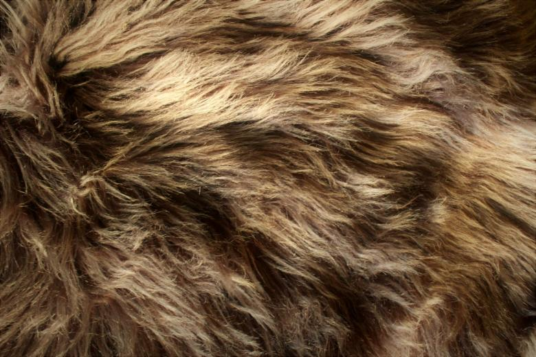 Free Stock Photo of Brown fluffy animal fur texture Created by Ivan